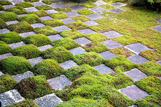 東福寺 重森三玲の庭